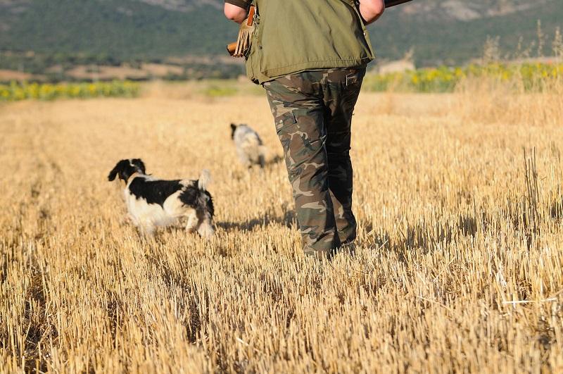 Asturias: «Los cazadores estamos rechazando las batidas porque dudamos de su legalidad»