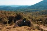 La Federación Alavesa de Caza asume la gestión del mejor coto de becadas de Euskadi