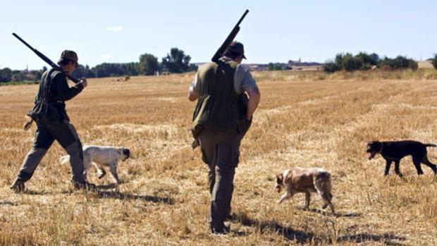 La mejora sanitaria devuelve a la caza en la región buenas perspectivas e ilusión